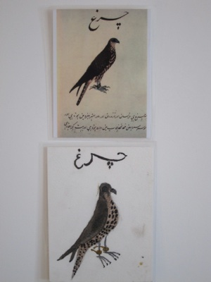 A merlin and urdu inscription, printed in gouache on paper; 19th century; Delhi Style