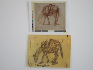 Study of a donkey in profile to left, grazing; 1501-1531; Florentine style