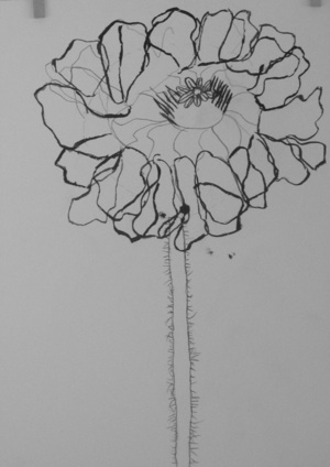 Ink drawing of flower